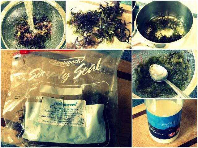 seaweed pudding
