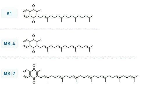 Vitamin_K_structures